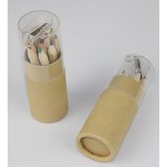Cilindro reciclado que incluye doce (12) lapices de colores ,con tapa transparente,y sacapuntas en la tapa